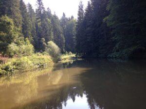 jezero Jarevac